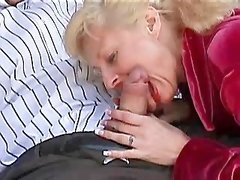Brunette mature gets ass fucking